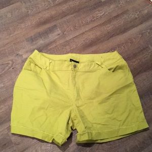 Lane Bryant NWOT Shorts